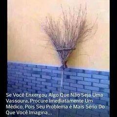 Sandra Borges Teixeira Bernardo